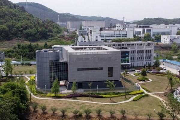 Лаборатория в Ухане семь лет хранила вирус, похожий на SARS-CoV-2