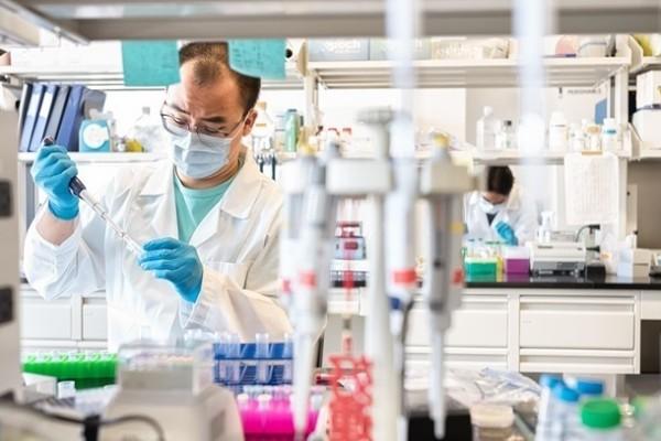 Ученые обнаружили уязвимость коронавируса