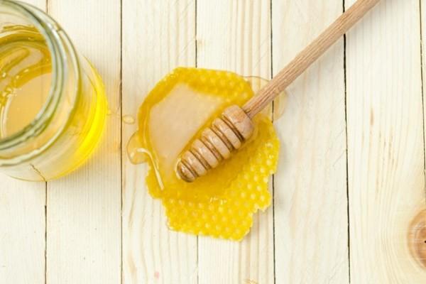 Ученые сравнили пользу меда и эффект от антибиотиков