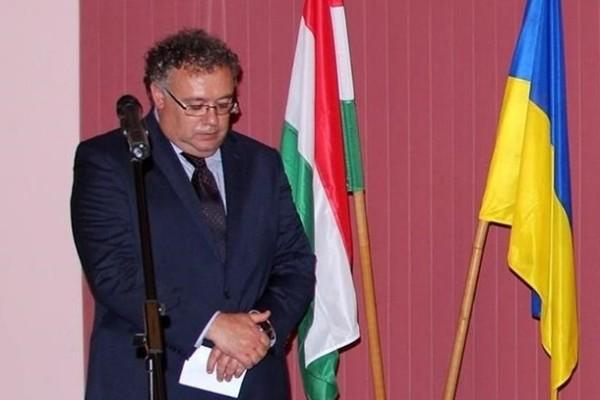 Посол Венгрии прокомментировал слова о «гражданской войне на Закарпатье»
