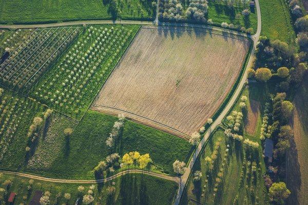 Земельная реформа приведет к росту ВВП на 1% ежегодно — Лещенко
