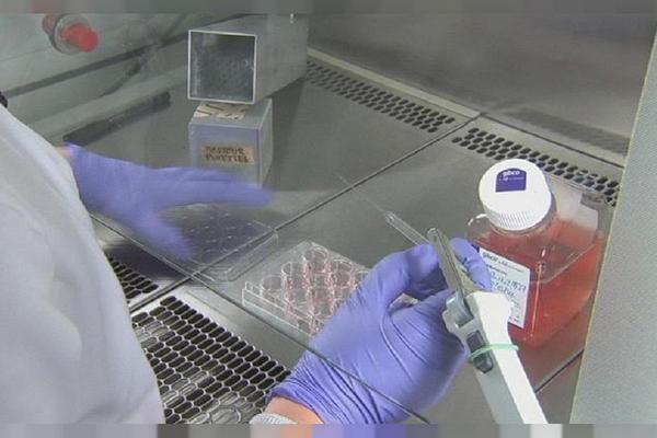 Ученые создали капли, которые могут защитить от коронавируса