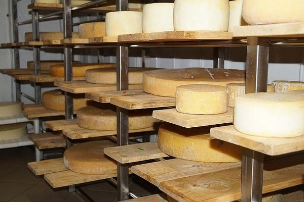 Во Франции монахи срочно распродают почти 3 тонны сыра, накопившегося за пандемию