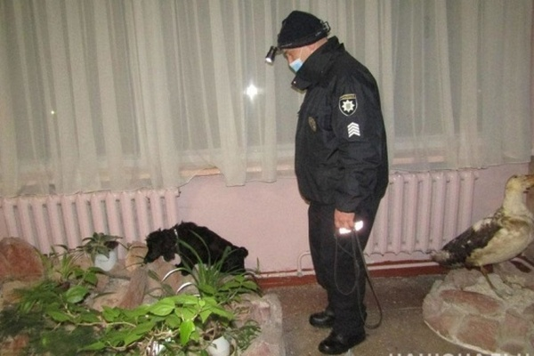 Девочка «заминировала» школу в Чернигове, поспорив с подругой — полиция