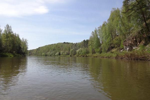 На западе Украины угроза новых подтоплений: в реках поднимается уровень воды