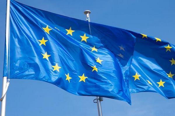 Немецкие ультраправые на выборах в Бундестаг будут продвигать выход из Евросоюза