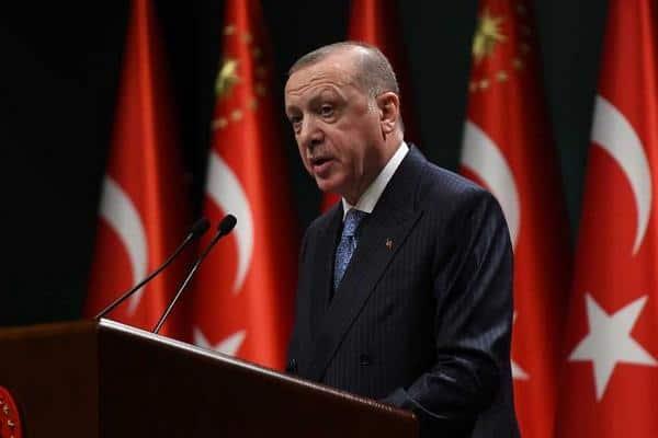 МИД Австрии вызвало посла Турции из-за проклятия Эрдогана