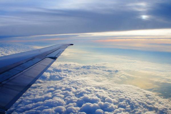 В Литве открыли дело из-за захвата самолета с Протасевичем на борту