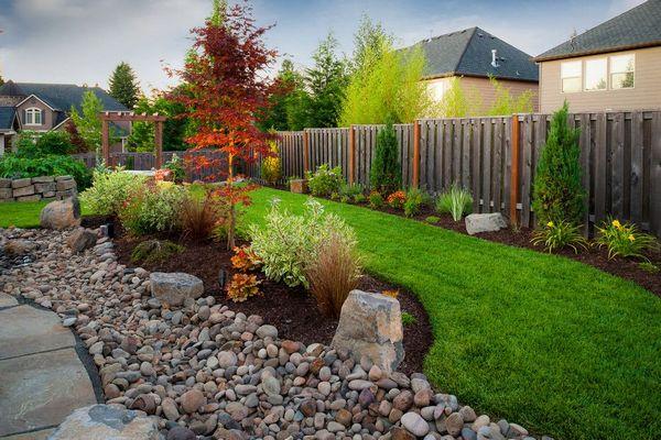 Как выбрать вечнозеленый декоративный кустарник для небольшого дачного участка