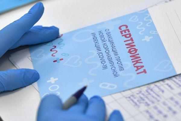 В ЕС уже выдали более 1 млн COVID-сертификатов