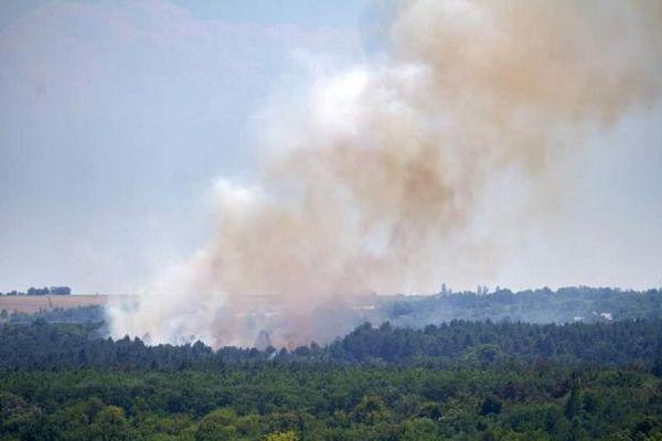 На острове Хортица произошел масштабный пожар. Тушение осложняет сильный ветер