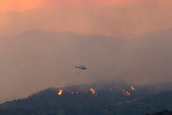 На Кипре из-за лесных пожаров погибли четыре человека