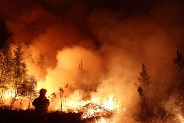 В России огонь уничтожил уже более миллиона гектаров леса