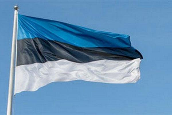 Эстония отправляет помощь Литве для охраны границы с Беларусью