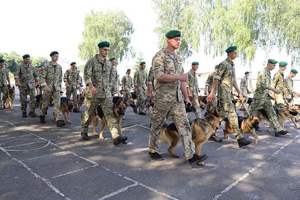 Собаки пограничников впервые примут участие в параде ко Дню Независимости