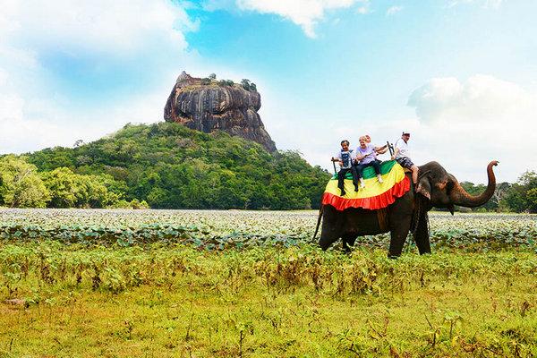 На Шри-Ланке после двух месяцев ограничений возобновляют работу рестораны, отели, кинотеатры